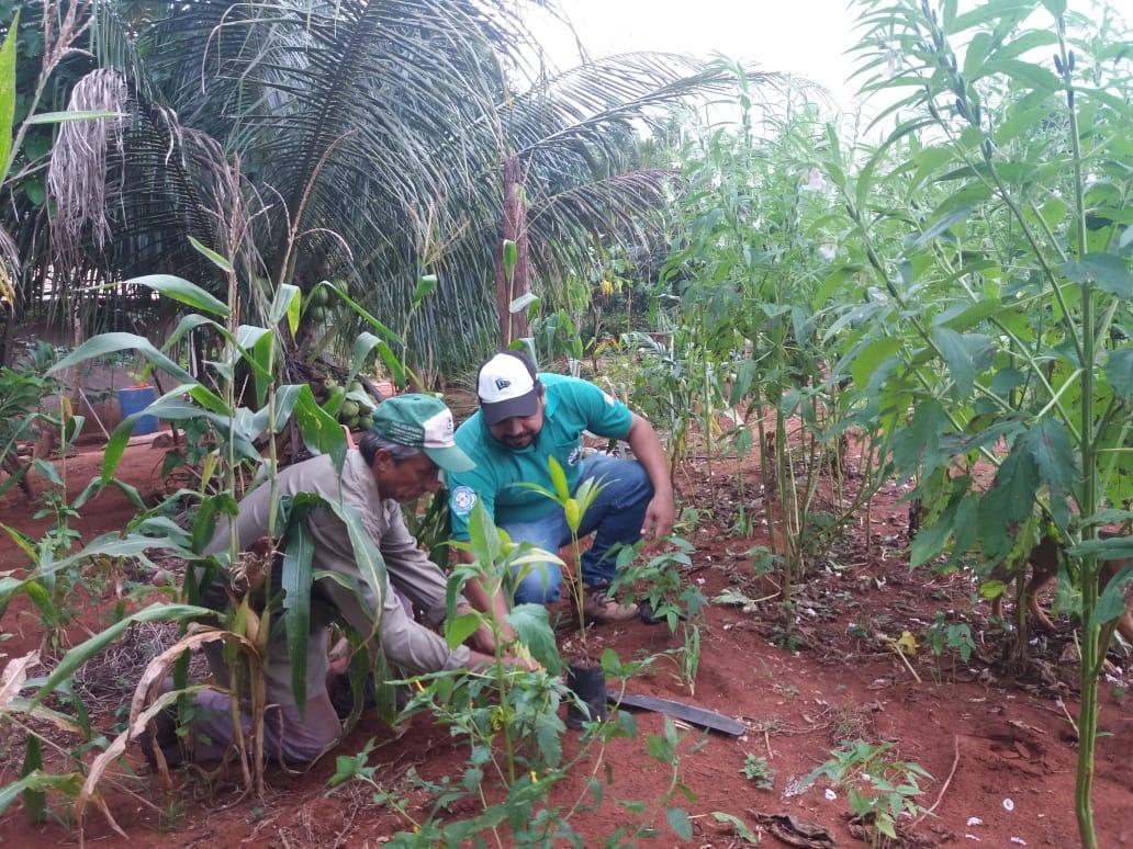 Em comemoração ao Dia Nacional de Conservação do Solo, Prefeitura de Angico promove ação ambiental no Ribeirão Mato Redondo