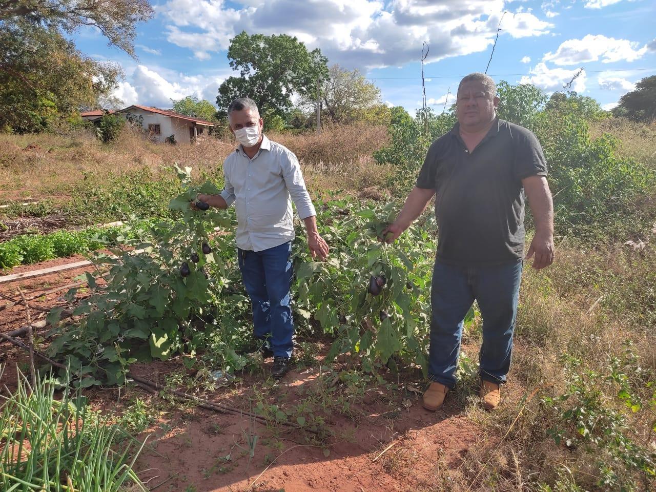 Prefeitura entrega 20 toneladas de adubo do tipo cama de frango para os pequenos produtores de Angico